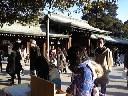 明治神宮詣